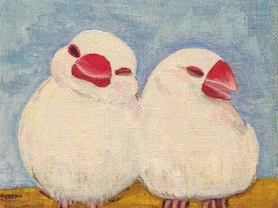 二羽の白文鳥