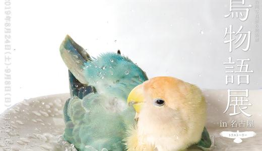 鳥物語トリストーリー展in名古屋出展